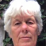 Anne Stijkel